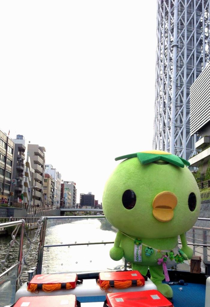 コタさんぽ201501